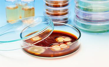 Prelievo-campioni-laboratorio-padova-pulimax